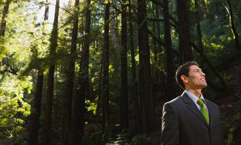 Businessman-Green-Forest-Environment-10003200045[1]