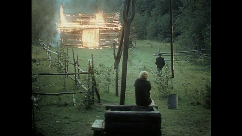 Visual Manna Tarkovsky The Mirror